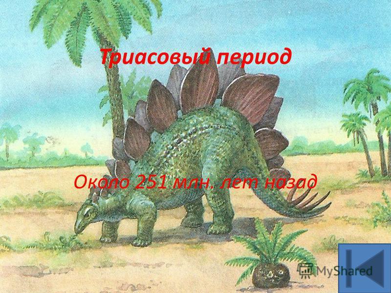 Триасовый период Около 251 млн. лет назад