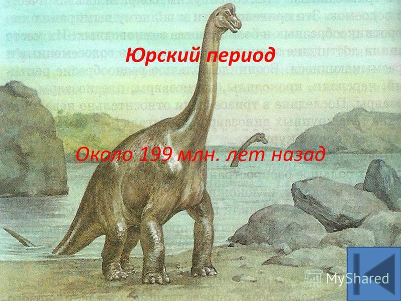 Юрский период Около 199 млн. лет назад