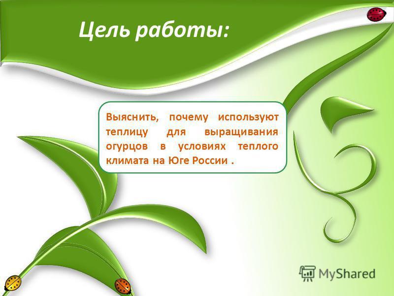 Выяснить, почему используют теплицу для выращивания огурцов в условиях теплого климата на Юге России. Цель работы: