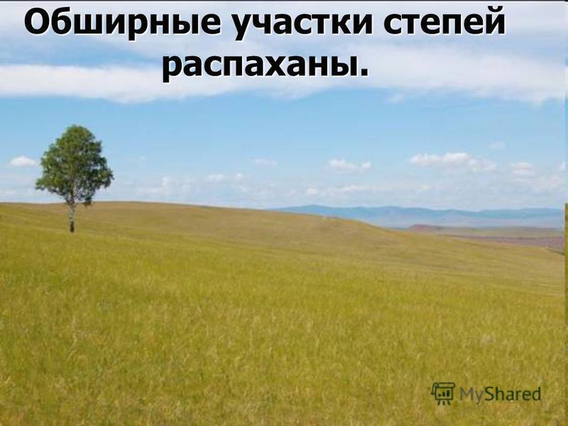 Обширные участки степей распаханы.