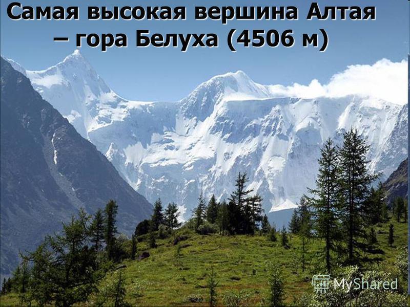 Самая высокая вершина Алтая – гора Белуха (4506 м)
