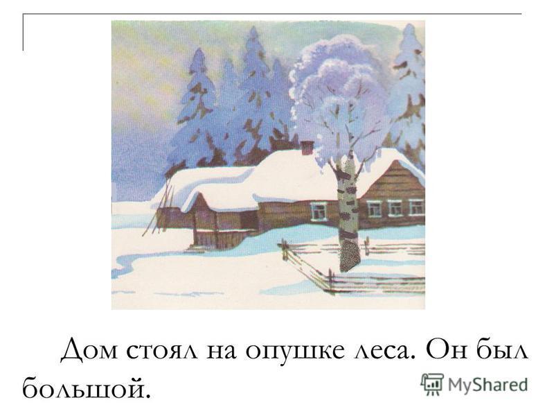 Дом стоял на опушке леса. Он был большой.