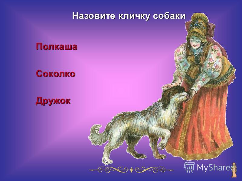 Назовите кличку собаки Полкаша СоколкоДружок