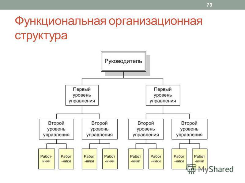Функциональная организационная структура 73