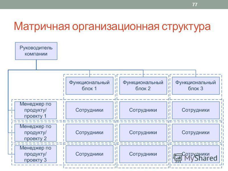 Матричная организационная структура 77
