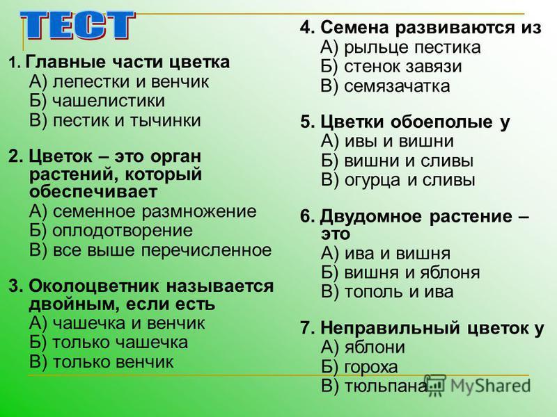 1. Главные части цветка А) лепестки и венчик Б) чашелистики В) пестик и тычинки 2. Цветок – это орган растений, который обеспечивает А) семенное размножение Б) оплодотворение В) все выше перечисленное 3. Околоцветник называется двойным, если есть А)