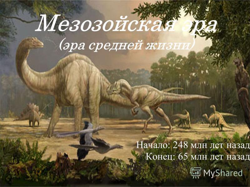 Мезозойская эра (эра средней жизни) Начало: 248 млн лет назад Конец: 65 млн лет назад