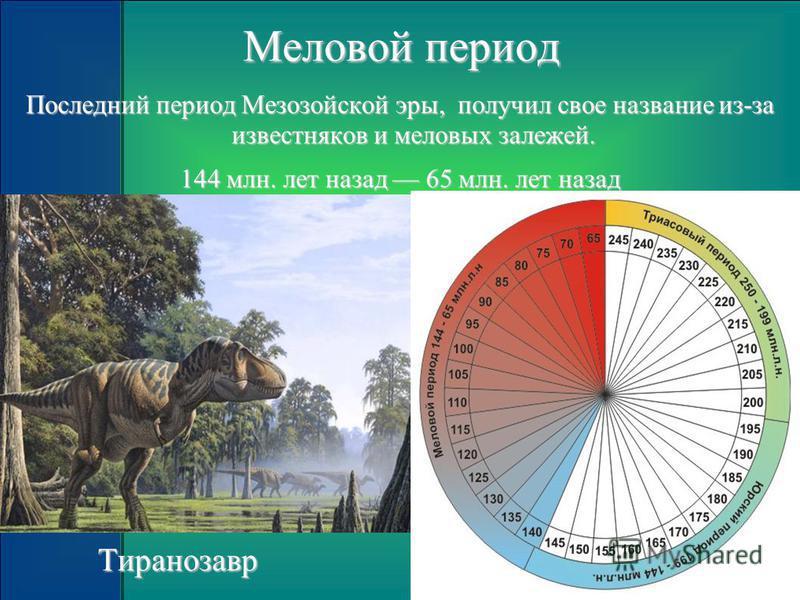 Меловой период Последний период Мезозойской эры, получил свое название из-за известняков и меловых залежей. 144 млн. лет назад 65 млн. лет назад Тиранозавр Тиранозавр