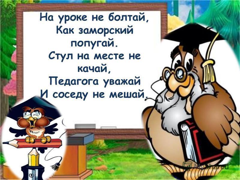 На уроке не болтай, Как заморский попугай. Стул на месте не качай, Педагога уважай И соседу не мешай.