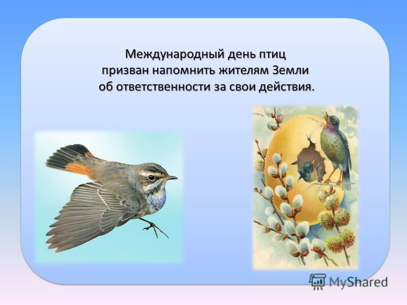 Международный день птиц призван напомнить жителям Земли об ответственности за свои действия. об ответственности за свои действия. Международный день птиц призван напомнить жителям Земли об ответственности за свои действия. об ответственности за свои