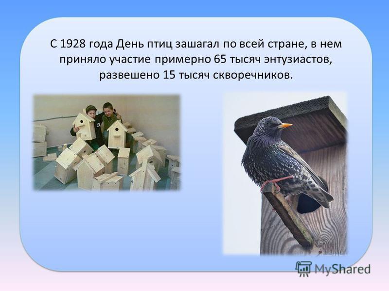 С 1928 года День птиц зашагал по всей стране, в нем приняло участие пpимеpно 65 тысяч энтузиастов, развешено 15 тысяч скворечников.