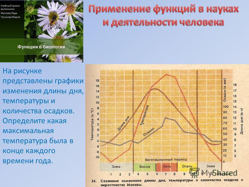 На рисунке представлены графики изменения длины дня, температуры и количества осадков. Определите какая максимальная температура была в конце каждого времени года.