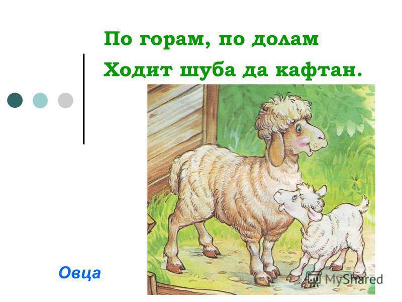 По горам, по долам Ходит шуба да кафтан. Овца