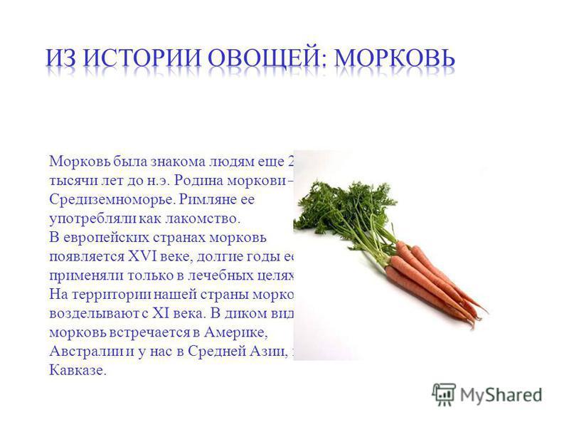 Морковь была знакома людям еще 2 тысячи лет до н.э. Родина моркови – Средиземноморье. Римляне ее употребляли как лакомство. В европейских странах морковь появляется XVI веке, долгие годы ее применяли только в лечебных целях. На территории нашей стран