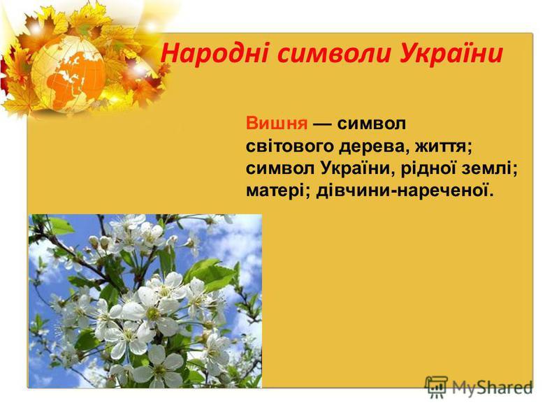 Народні символи України Вишня символ світового дерева, життя; символ України, рідної землі; матері; дівчини-нареченої.