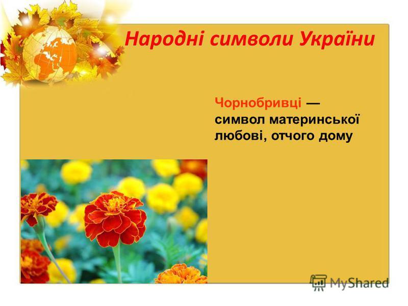 Народні символи України Чорнобривці символ материнської любові, отчого дому