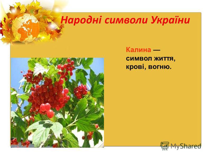 Народні символи України Калина символ життя, крові, вогню.
