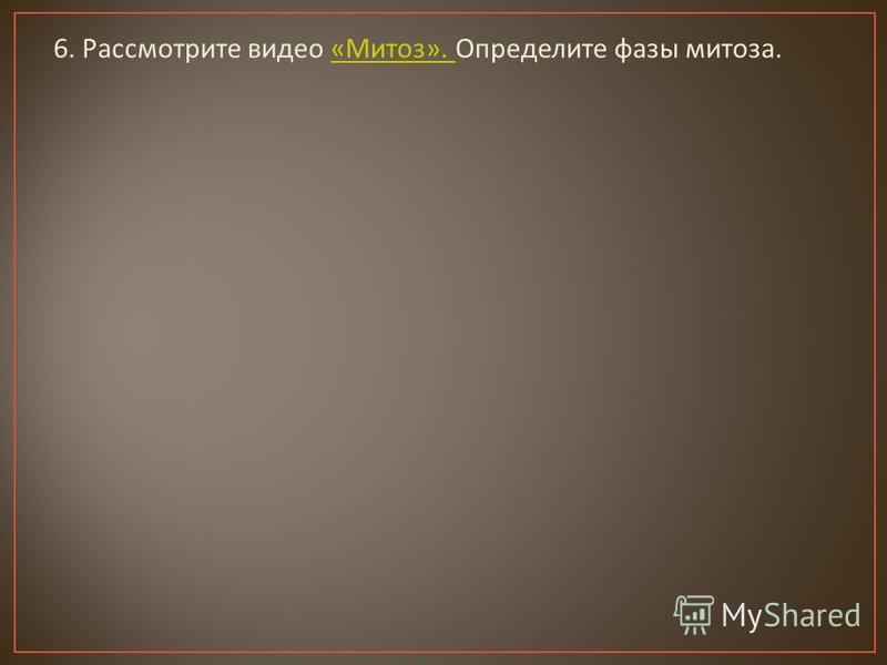 6. Рассмотрите видео « Митоз ». Определите фазы митоза.« Митоз ».