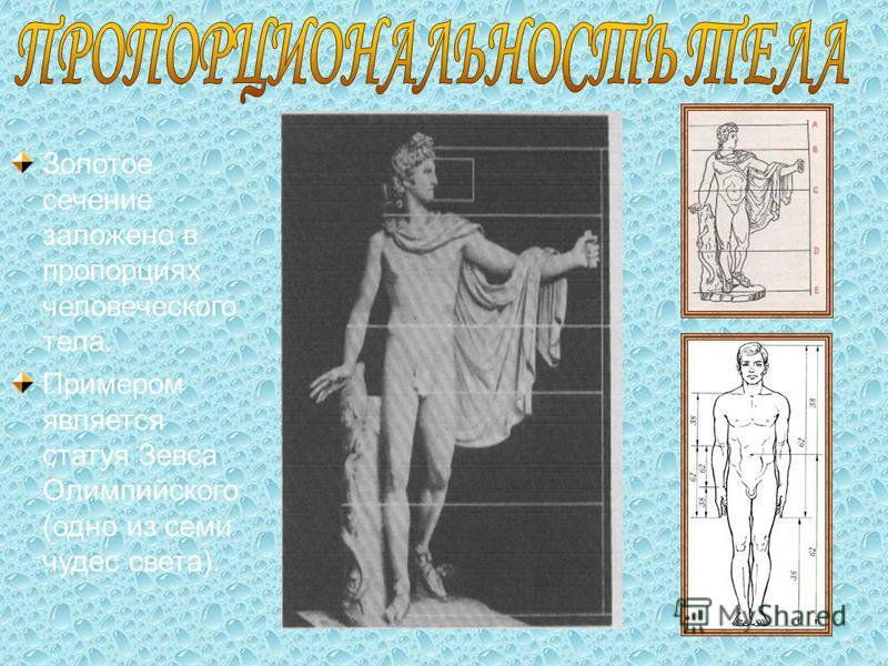Золотое сечение заложено в пропорциях человеческого тела. Примером является статуя Зевса Олимпийского (одно из семи чудес света).