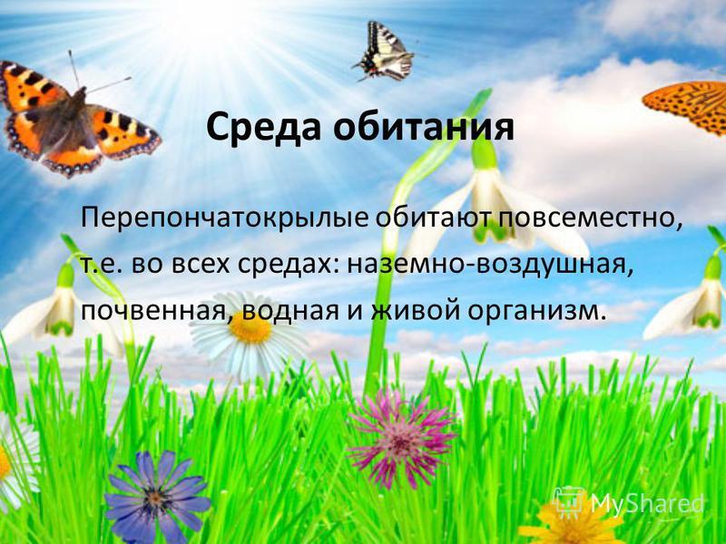 Среда обитания Перепончатокрылые обитают повсеместно, т.е. во всех средах: наземно-воздушная, почвенная, водная и живой организм.