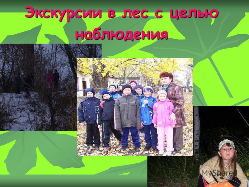 Экскурсии в лес с целью наблюдения