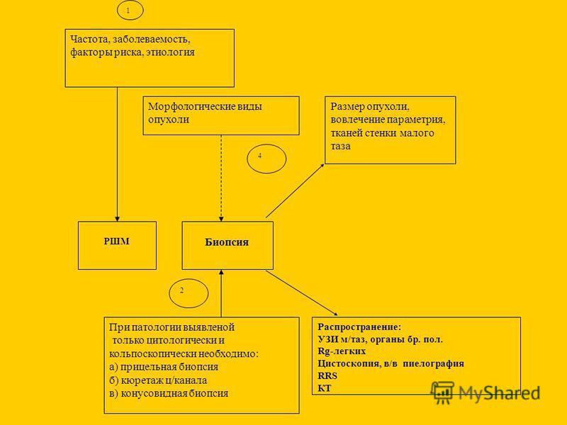 Частота, заболеваемость, факторы риска, этиология РШМ Морфологические виды опухоли Биопсия При патологии выявленной только цитологический и кольпоскопически необходимо: а) прицельная биопсия б) кюретаж ц/канала в) конусовидная биопсия Размер опухоли,