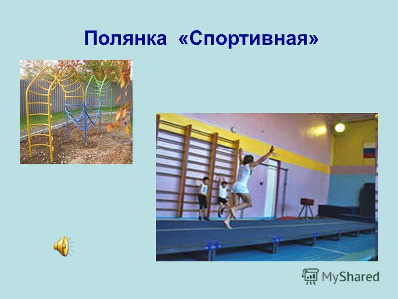 Полянка «Спортивная»