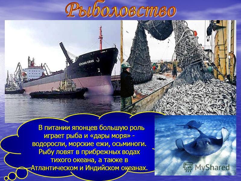 В питании японцев большую роль играет рыба и «дары моря» - водоросли, морские ежи, осьминоги. Рыбу ловят в прибрежных водах тихого океана, а также в Атлантическом и Индийском океанах. В питании японцев большую роль играет рыба и «дары моря» - водорос