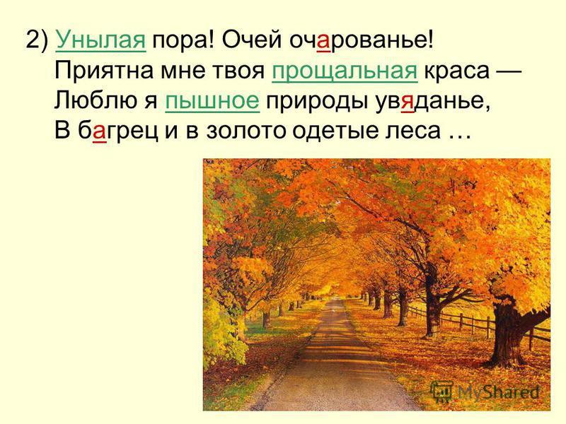 2) Унылая пора! Очей очарованье! Приятна мне твоя прощальная краса Люблю я пышное природы увяданье, В багреции в золото одетые леса …