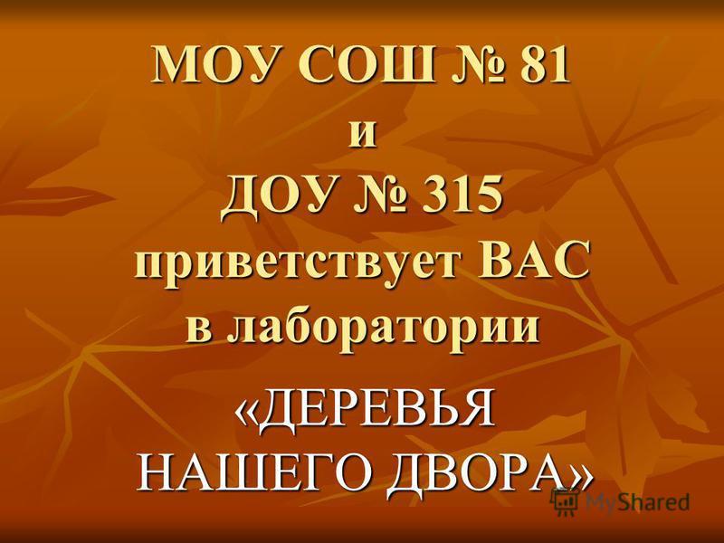 МОУ СОШ 81 и ДОУ 315 приветствует ВАС в лаборатории «ДЕРЕВЬЯ НАШЕГО ДВОРА»