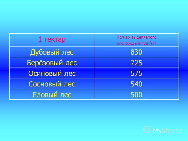 1 гектар Кол-во выделяемого кислорода в год (кг) Дубовый лес 830 Берёзовый лес 725 Осиновый лес 575 Сосновый лес 540 Еловый лес 500
