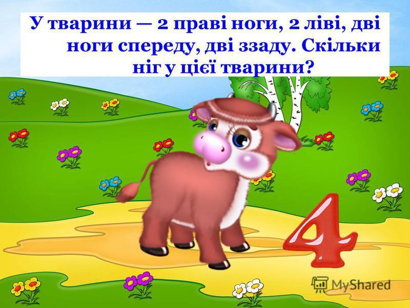 У тварини 2 праві ноги, 2 ліві, дві ноги спереду, дві ззаду. Скільки ніг у цієї тварини?