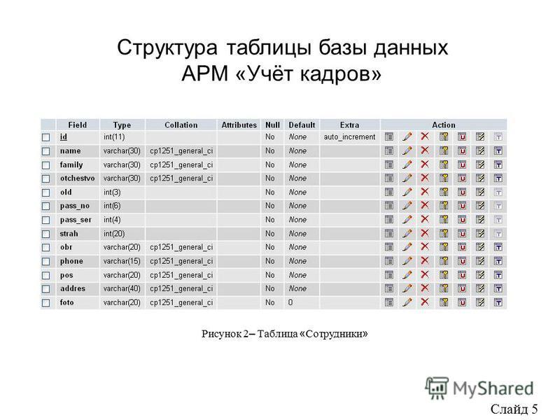 Структура таблицы базы данных АРМ «Учёт кадров» Слайд 5 Рисунок 2 – Таблица « Сотрудники »