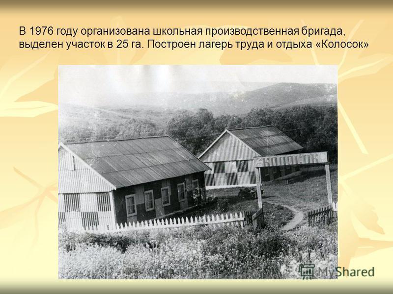 В 1976 году организована школьная производственная бригада, выделен участок в 25 га. Построен лагерь труда и отдыха «Колосок»