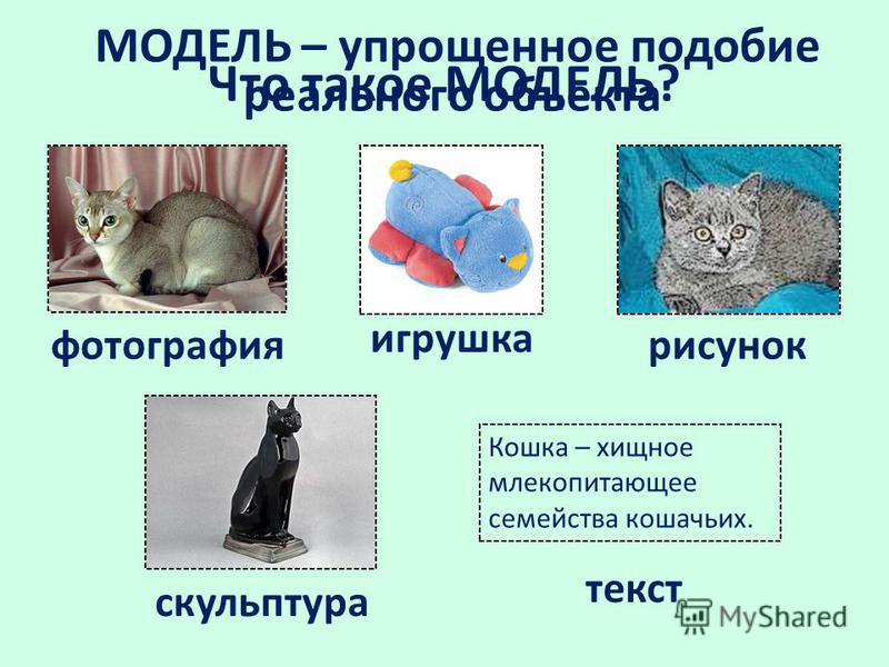 Что такое МОДЕЛЬ? фотография рисунок скульптура текст Кошка – хищное млекопитающее семейства кошачьих. МОДЕЛЬ – упрощенное подобие реального объекта игрушка