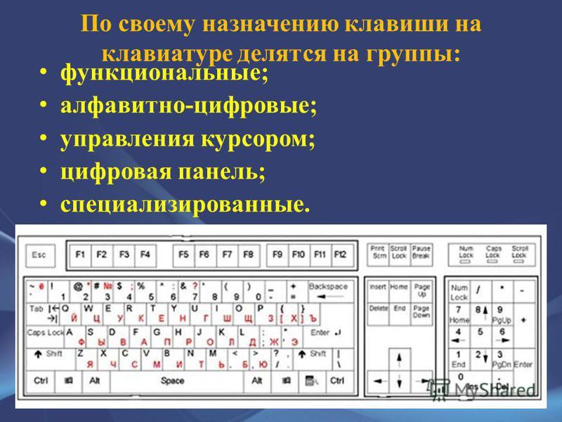 По своему назначению клавиши на клавиатуре делятся на группы: функциональные; алфавитно-цифровые; управления курсором; цифровая панель; специализированные.