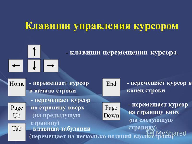 Клавиши управления курсором - клавиши перемещения курсора. HomeEnd - перемещает курсор в начало строки - перемещает курсор в конец строки Page Up - перемещает курсор на страницу вверх (на предыдущую страницу) Page Down - перемещает курсор на страницу
