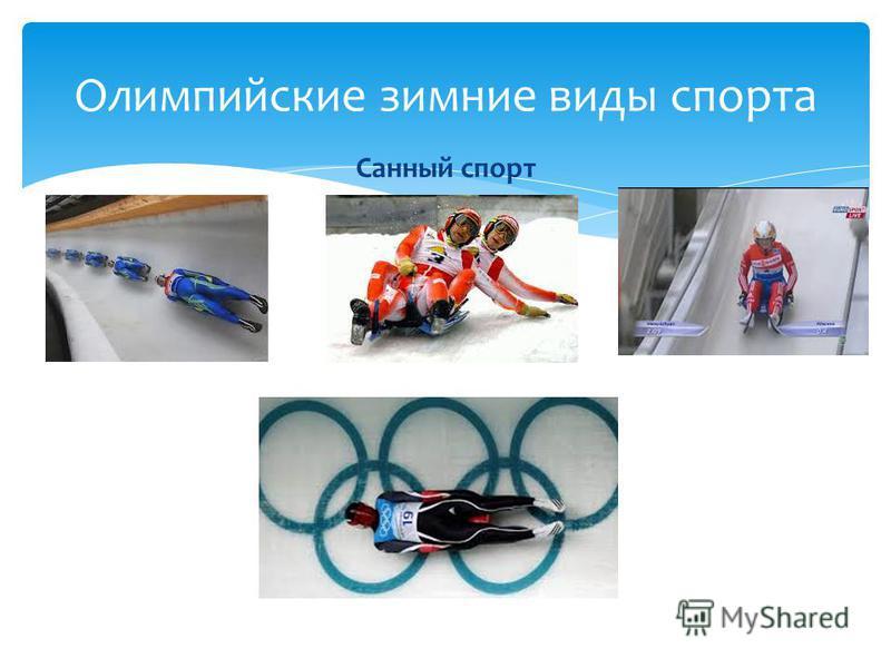 Санный спорт Олимпийские зимние виды спорта