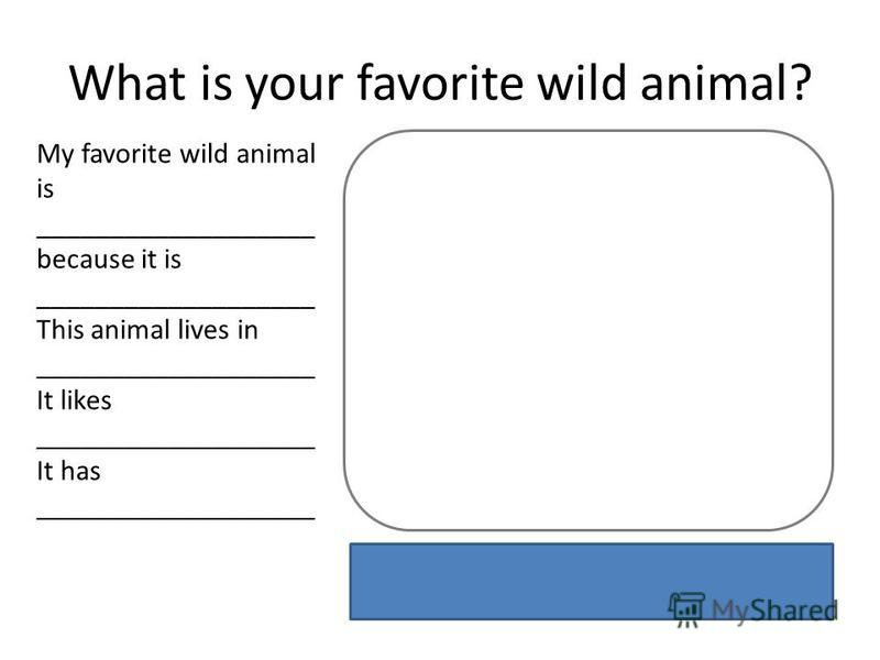 What is your favorite wild animal? My favorite wild animal is ___________________ because it is ___________________ This animal lives in ___________________ It likes ___________________ It has ___________________