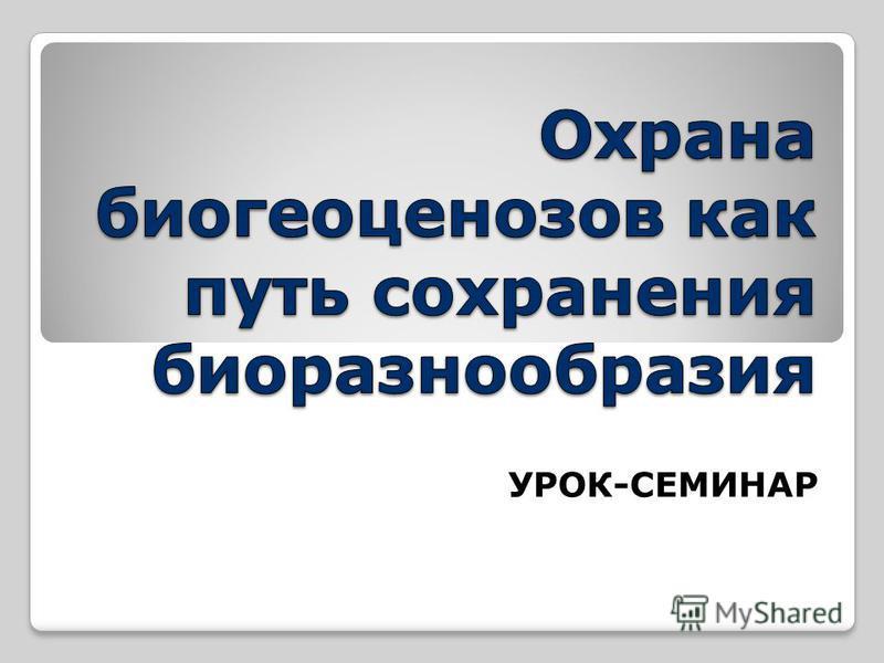 УРОК-СЕМИНАР