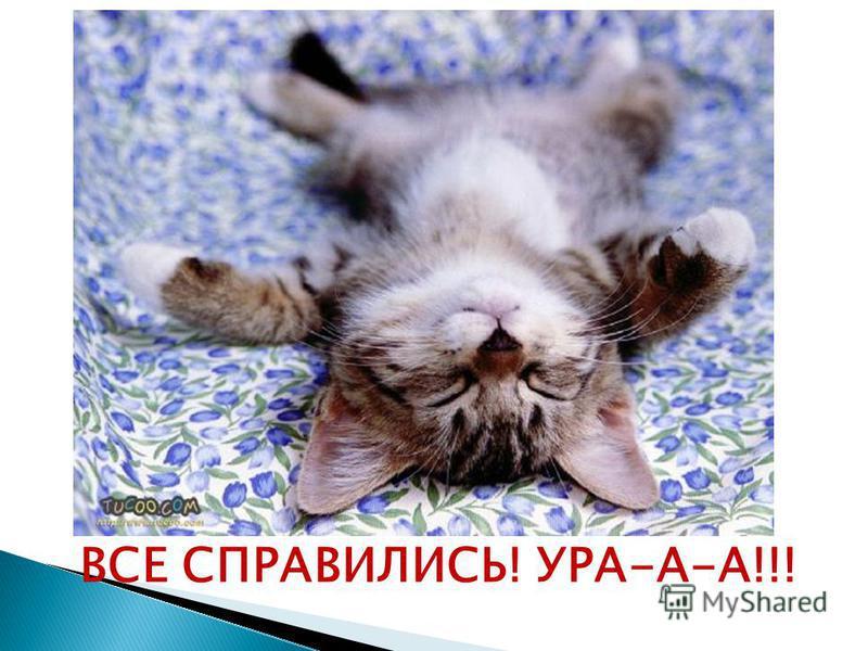 ВСЕ СПРАВИЛИСЬ! УРА-А-А!!!