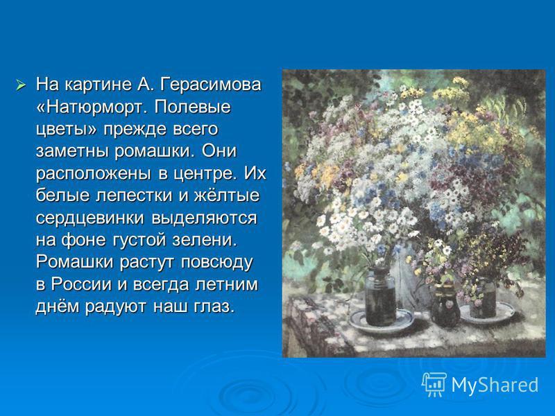 На картине А. Герасимова «Натюрморт. Полевые цветы» прежде всего заметны ромашки. Они расположены в центре. Их белые лепестки и жёлтые сердце венки выделяются на фоне густой зелени. Ромашки растут повсюду в России и всегда летним днём радуют наш глаз