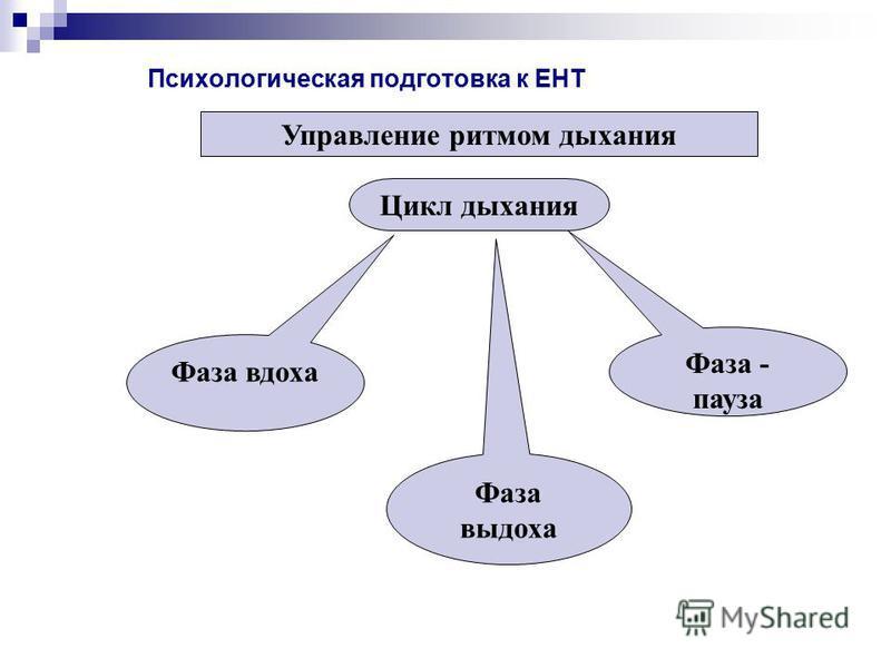 Психологическая подготовка к ЕНТ Управление ритмом дыхания Цикл дыхания Фаза вдоха Фаза выдоха Фаза - пауза