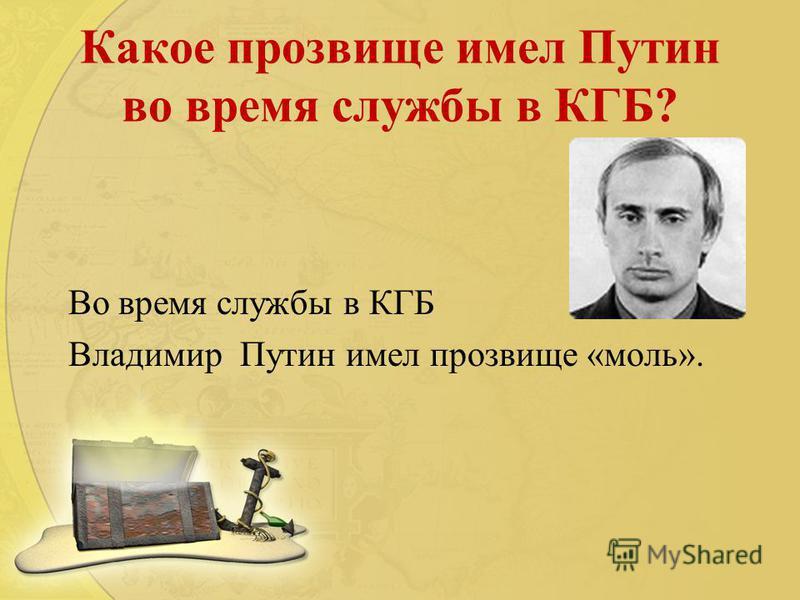 Какое прозвище имел Путин во время службы в КГБ? Во время службы в КГБ Владимир Путин имел прозвище «моль».