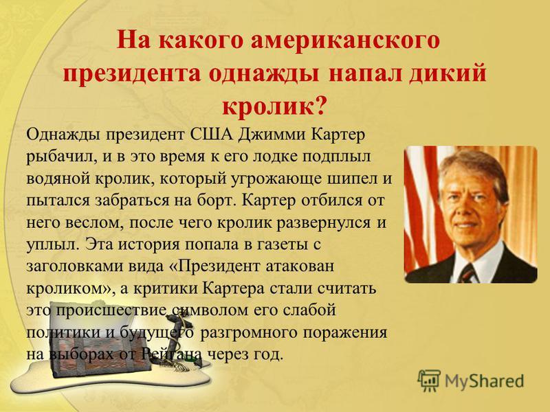 На какого американского президента однажды напал дикий кролик? Однажды президент США Джимми Картер рыбачил, и в это время к его лодке подплыл водяной кролик, который угрожающе шипел и пытался забраться на борт. Картер отбился от него веслом, после че