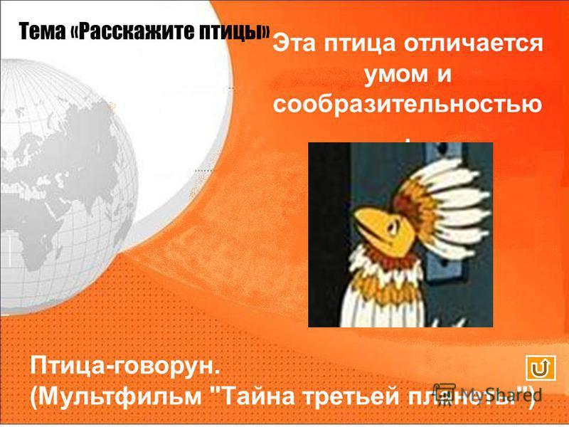 Тема «Расскажите птицы» Эта птица отличается умом и сообразительностью