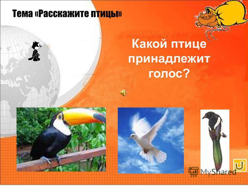 Сорока Тема «Расскажите птицы»