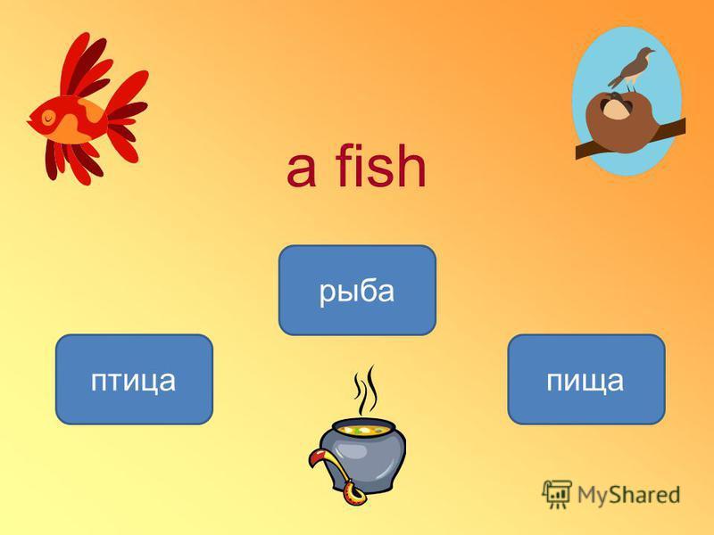 a fish рыба птица пища