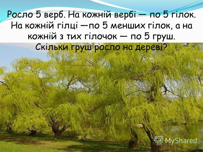 Росло 5 верб. На кожній вербі по 5 гілок. На кожній гілці по 5 менших гілок, а на кожній з тих гілочок по 5 груш. Скільки груш росло на дереві?
