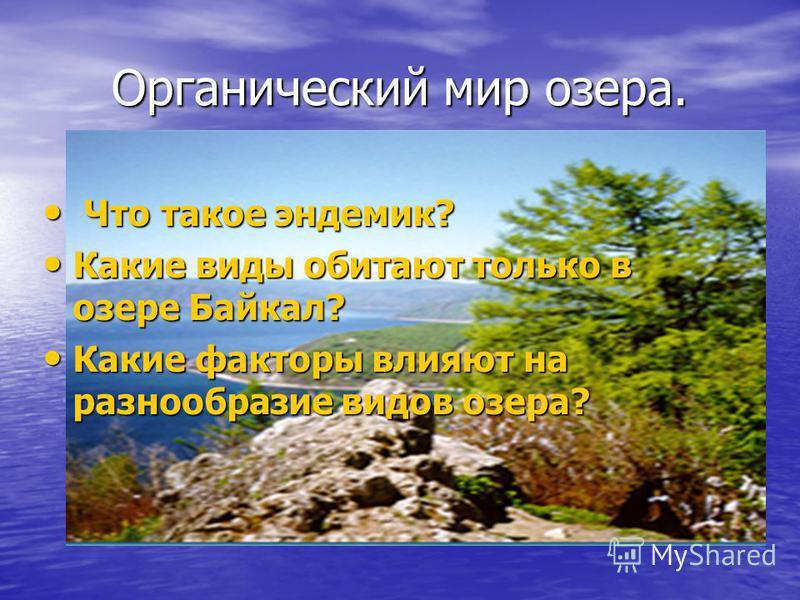 Органический мир озера. Что такое эндемик? Что такое эндемик? Какие виды обитают только в озере Байкал? Какие виды обитают только в озере Байкал? Какие факторы влияют на разнообразие видов озера? Какие факторы влияют на разнообразие видов озера?